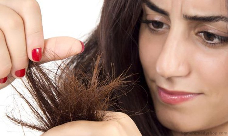 750x450xHome-Remedies-for-Treating-Split-Ends.jpg.pagespeed.ic.jPo2u-Oaf5
