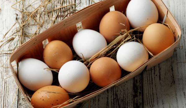 eggs-600_600x350_81428644631